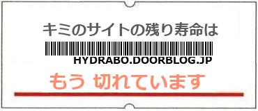 画像:サイト賞味期限(http://hydrabo.doorblog.jp/)