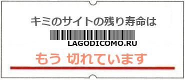 画像:サイト賞味期限(http://lagodicomo.ru)
