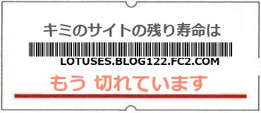 画像:サイト賞味期限(http://lotuses.blog122.fc2.com/)