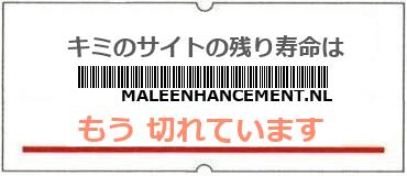 画像:サイト賞味期限(http://maleenhancement.nl/)