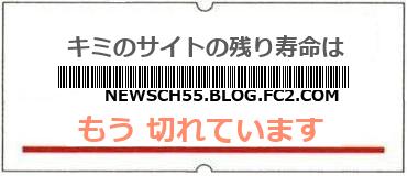 画像:サイト賞味期限(http://newsch55.blog.fc2.com/)
