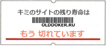 画像:サイト賞味期限(http://olddoker.ru)
