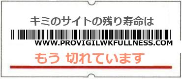 画像:サイト賞味期限(http://www.provigilwkfullness.com/)