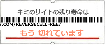 画像:サイト賞味期限(https://storify.com/reversecellfree/cell-phone-reverse-phone-number-lookup)