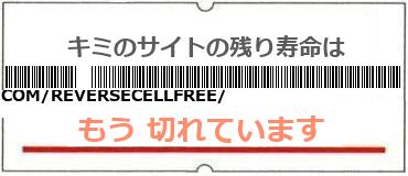 画像:サイト賞味期限(https://storify.com/reversecellfree/free-cell-phone-reverse-lookup-directory)